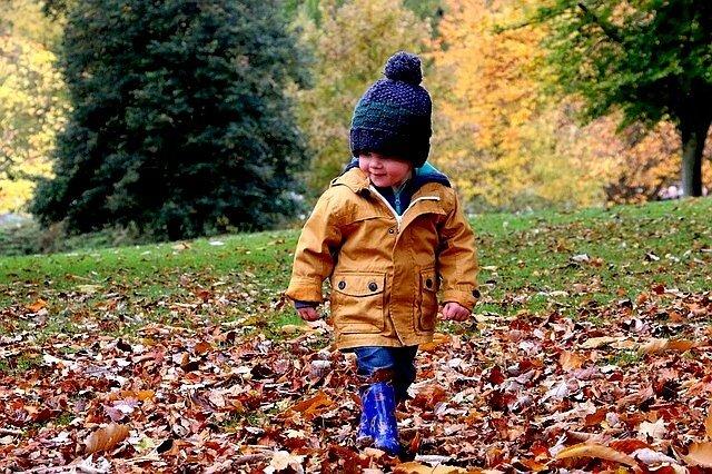 Il quadro d'autunno