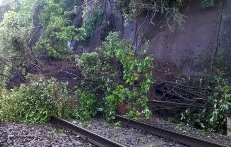 Treni in Calabria, anche il vento è contrario