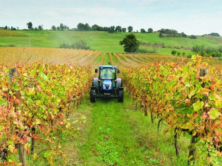 Aziende agricole, ecco il nuovo bando del Gal Savuto,Tirreno e Serre cosentine
