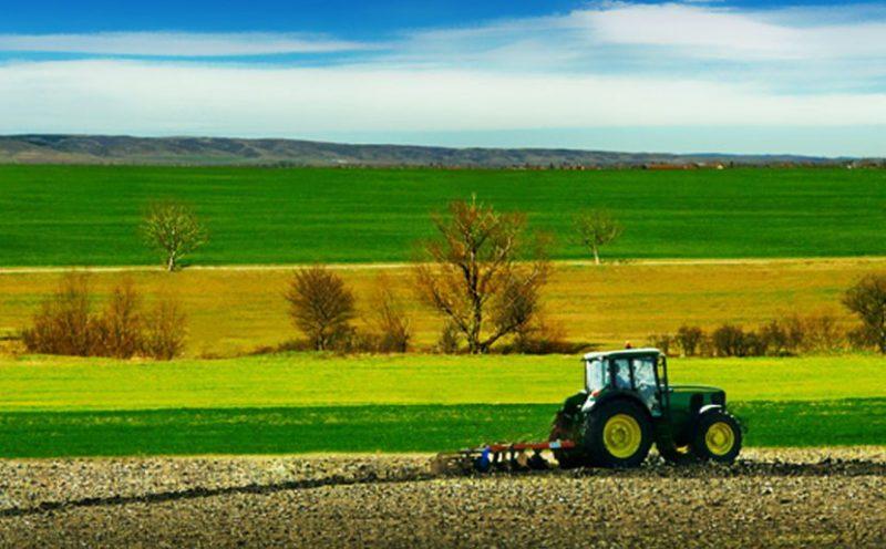 gal-valle del crati-finanziamenti-aziende agricole