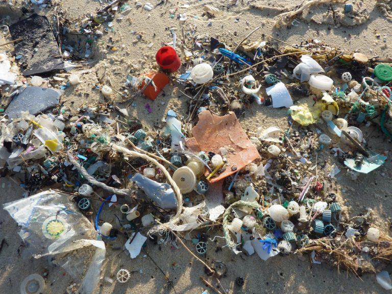 Sempre meno plastica monouso nell'UE dal 2021