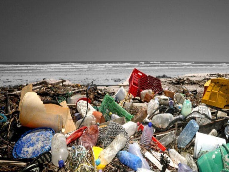Anche in Calabria la plastica invade i nostri mari e le nostre spiagge