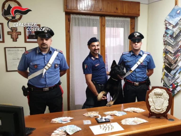 Il fiuto del cane Enno dei carabinieri fa arrestare 2 uomini
