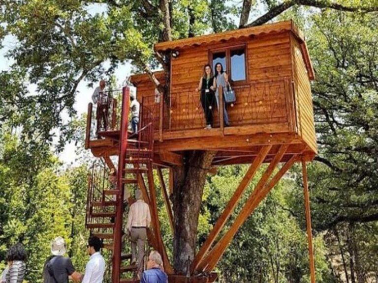 La singolare casetta sull'albero di Rogliano, luogo di rifugio ed evasione per tutti