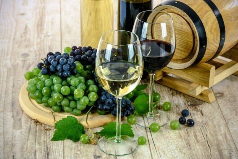 Museo del Vino a Donnici, il Comune di Cosenza approva la delibera