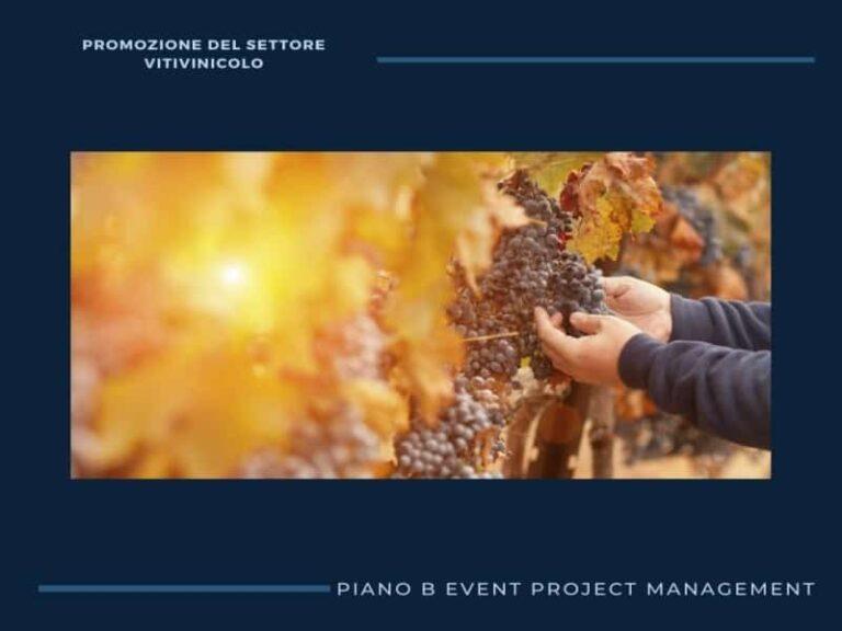 Incentivi al comparto vitivinicolo, al via le domande per gli incentivi
