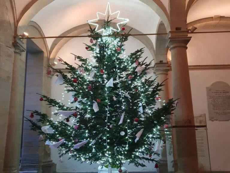 L'Albero della Pace illumina il Santuario di Paola