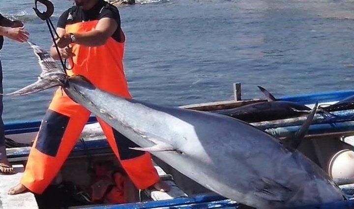 Minacciavano e ricattavano pescatori del tirreno cosentino, 4 arresti