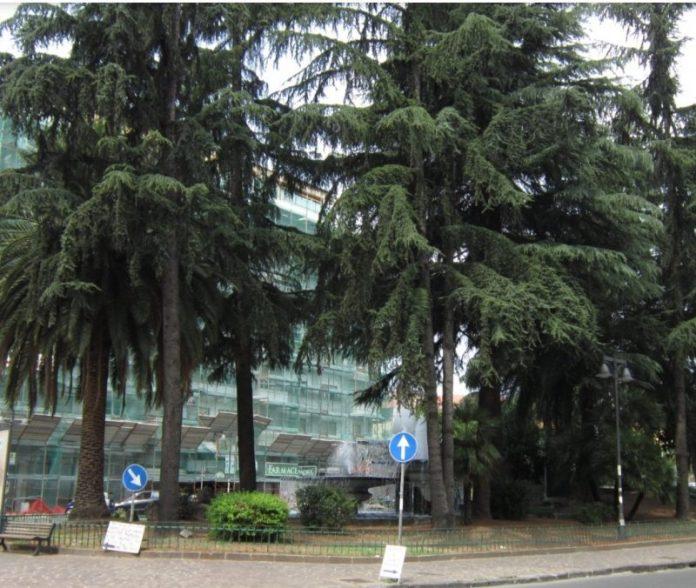 piazza-europa-albanese-gambizzato-cosenza-polizia
