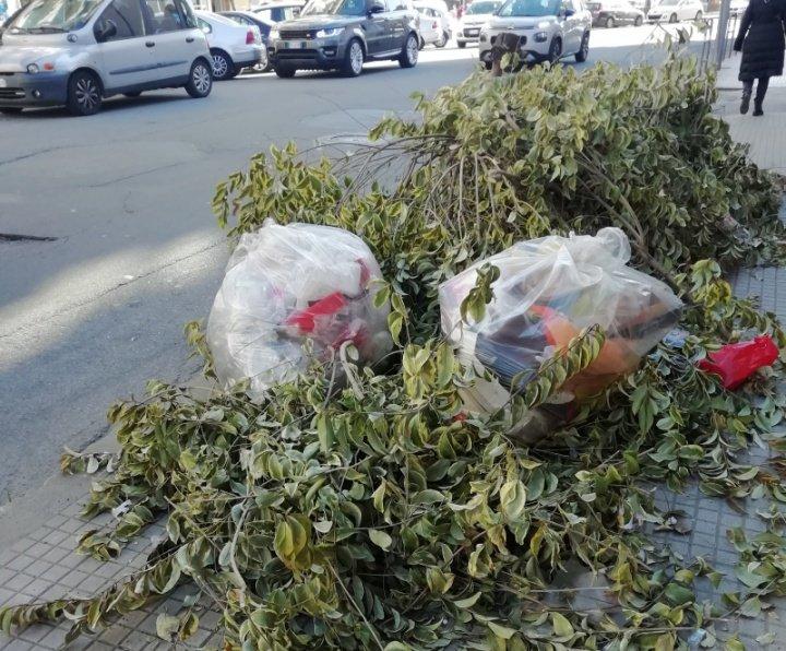 Cosenza sommersa dai rifiuti adornati però dal verde