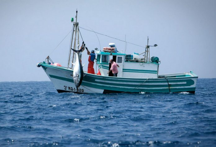 sostenere-pescatori-calabresi-acquisto-consumo-pesce-made-in-italy