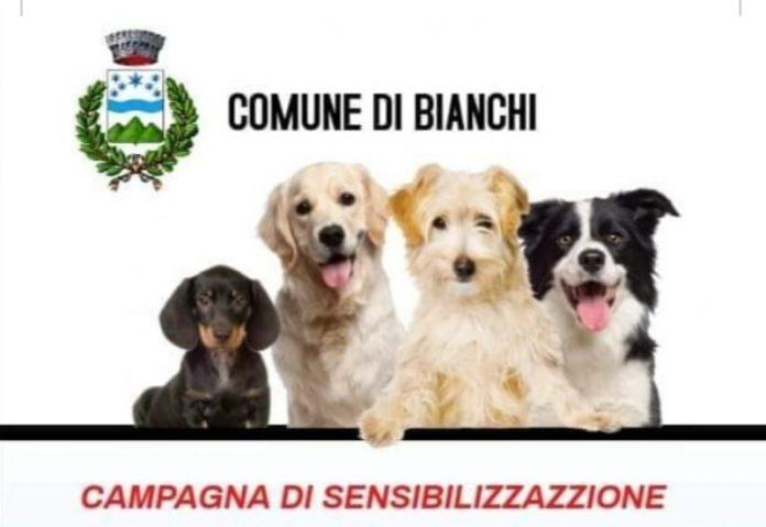 campagna adozione cani a Bianchi