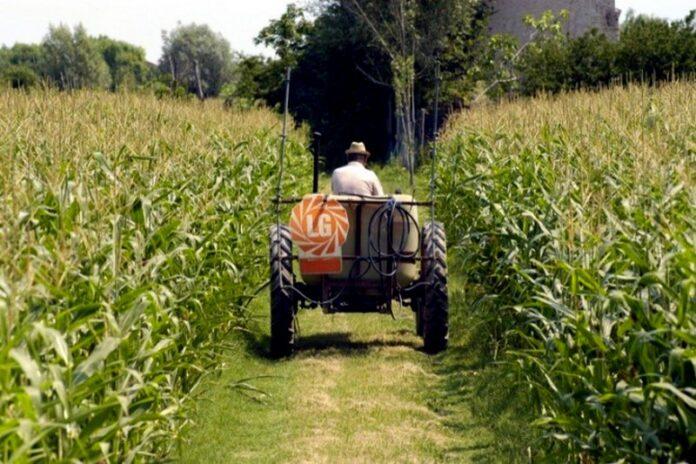 agricoltura fondi calabria