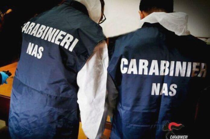 carabinieri nas rsa calabria