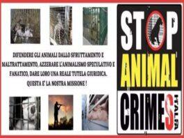 diritti degli animali