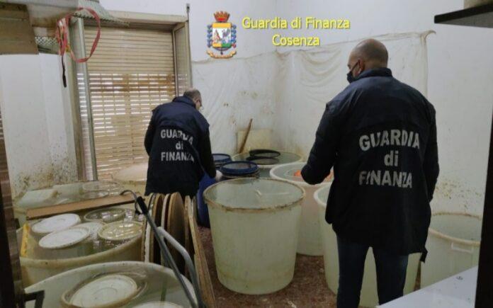 contrabbando alcolici sequestro gdf