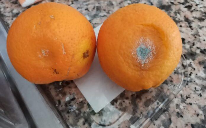 frutta marcia scuole lamezia
