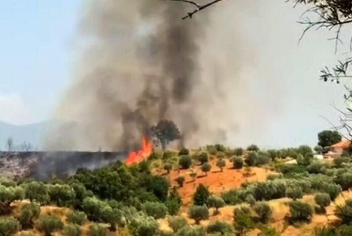 incendio sant'agostino rende