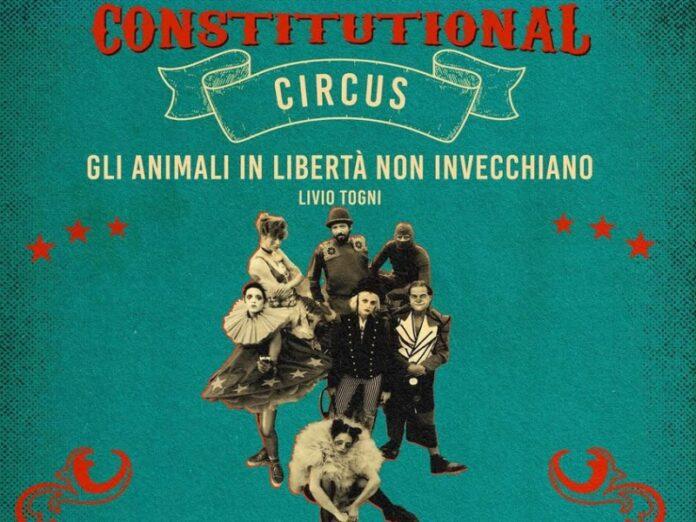 Constitutional Circus