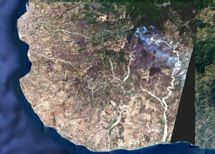 incendi aspromonte satellite