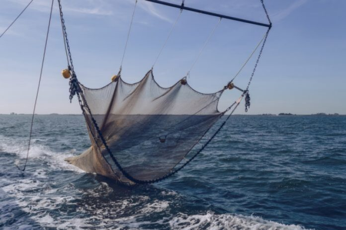 pesca strascico a riva