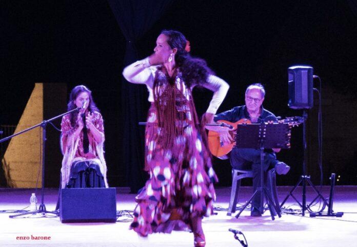 flamenco a Palmi