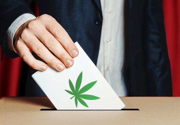 referendum cannabis
