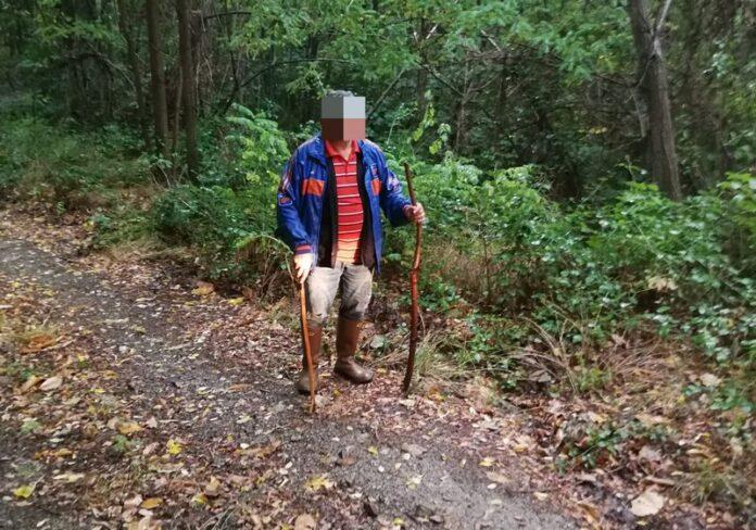 anziano disperso funghi sila