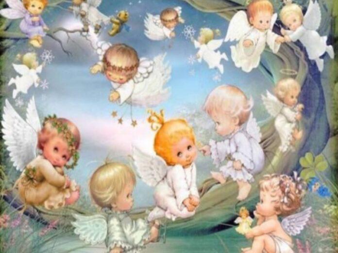 disposta autopsia morte neonata Rossano