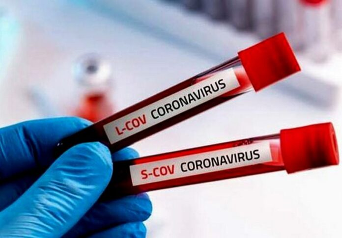 tamponi virus coronavirus controlli